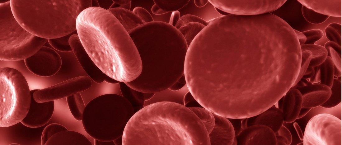 La importancia del acceso inmediato al test de trombofilia