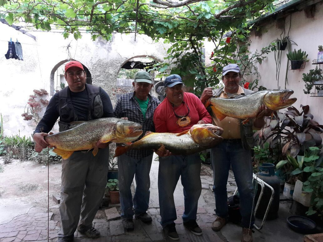 Solicitan que se detenga la depredación en el río Juramento