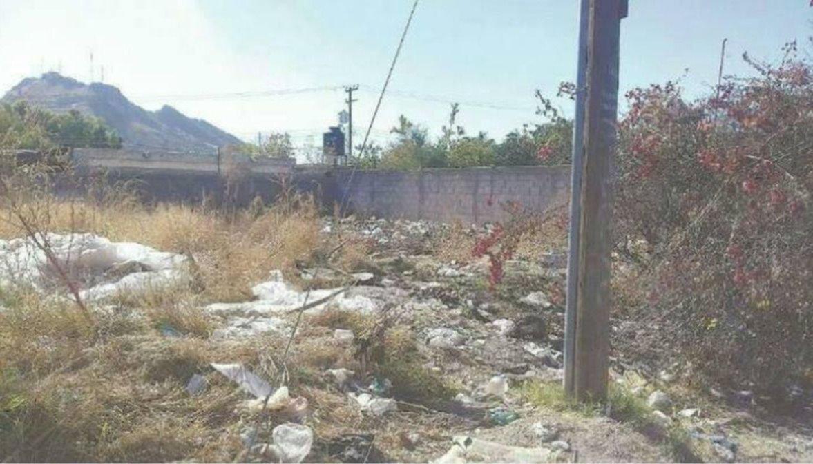 Intimarán y multarán a dueñosde terrenos baldíos descuidados