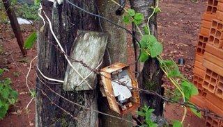 Un ladrón murió electrocutado por un precario cerco eléctrico