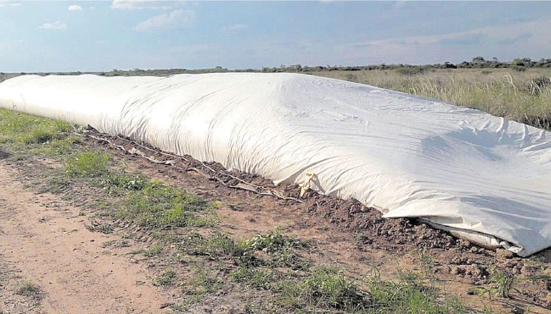 Pequeños productores, preocupados  por los robos en la zona de Anta