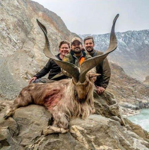 Cazador texano pagó 110,000 dólares por matar a rara cabra en Pakistán - Noticias - Nota