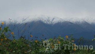 ¡Qué belleza! Los cerros del oeste de Salta están de blanco