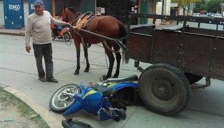 Un accidente reavivó la polémica por los carros tracción a sangre en la ciudad