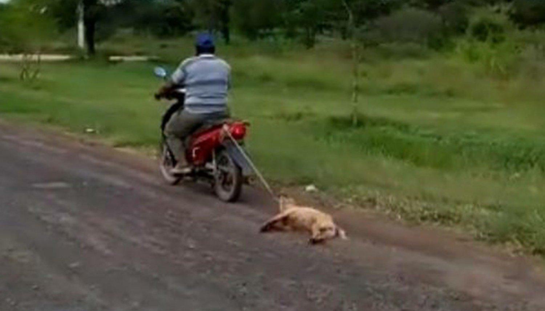Grabaron a un hombre arrastrando a su perro con su moto