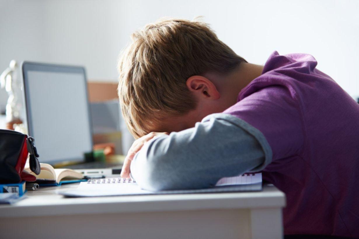 El bullying avanza en las aulas: hay más ataques en la secundaria que en la primaria