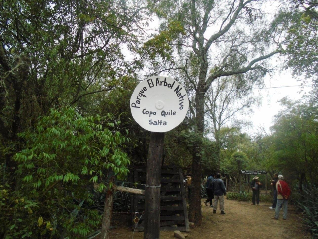 Presentan el Parque Nativo de Copo Quile