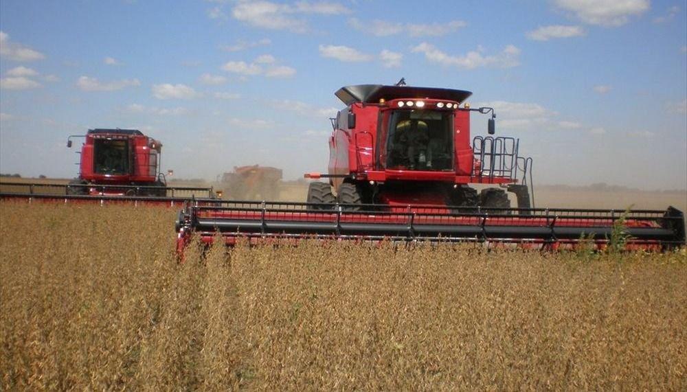 Federsal apoya frenar la baja de las retenciones a la soja por un año