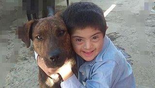 Crueldad en San Juan: envenenaron a un perro que era guía de un niño con síndrome de Down