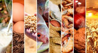 El INTI capacitará sobre los cambios en el Rotulado de Alérgenos en Alimentos