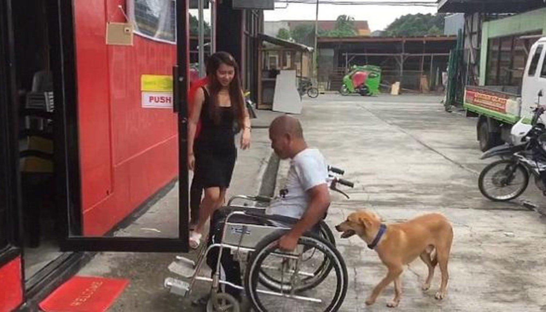 [VIDEO] Perro ayuda a su amo empujando su silla de ruedas por la calle