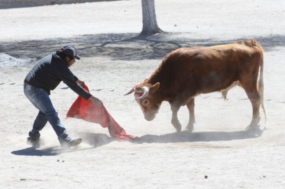 Los toros de Casabindo 9d5c0bc768f