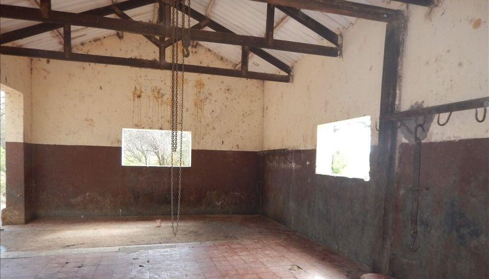 Lumbreras: siguen las faenas en un matadero clausurado