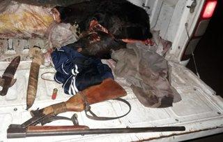 Cazaban vacas a balazos para vender su carne