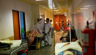 Se espera un recrudecimiento en los casos de dengue en Salta