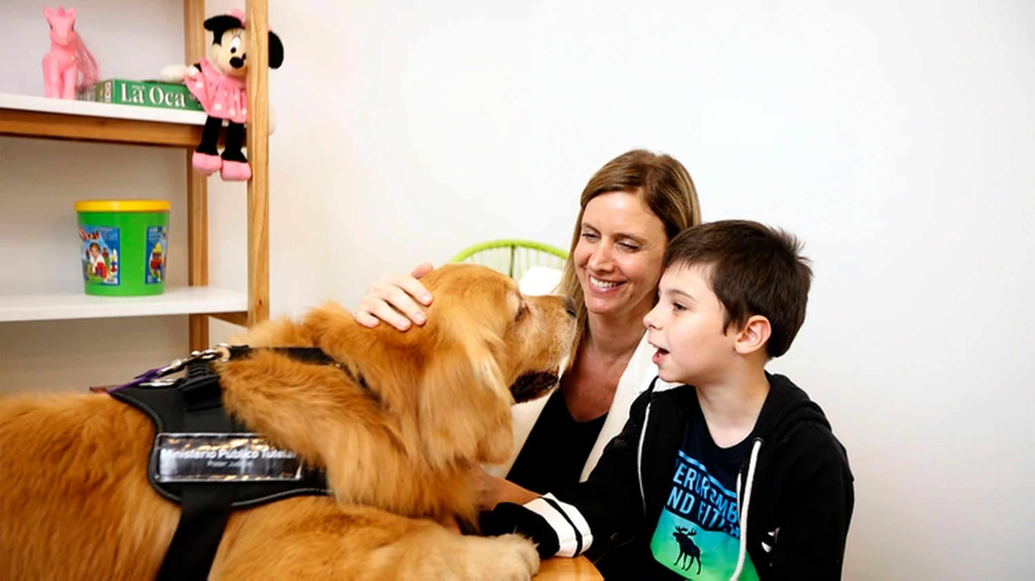 """Titán"", el primer perro que acompaña a niños a declarar como víctimas o testigos de delitos"