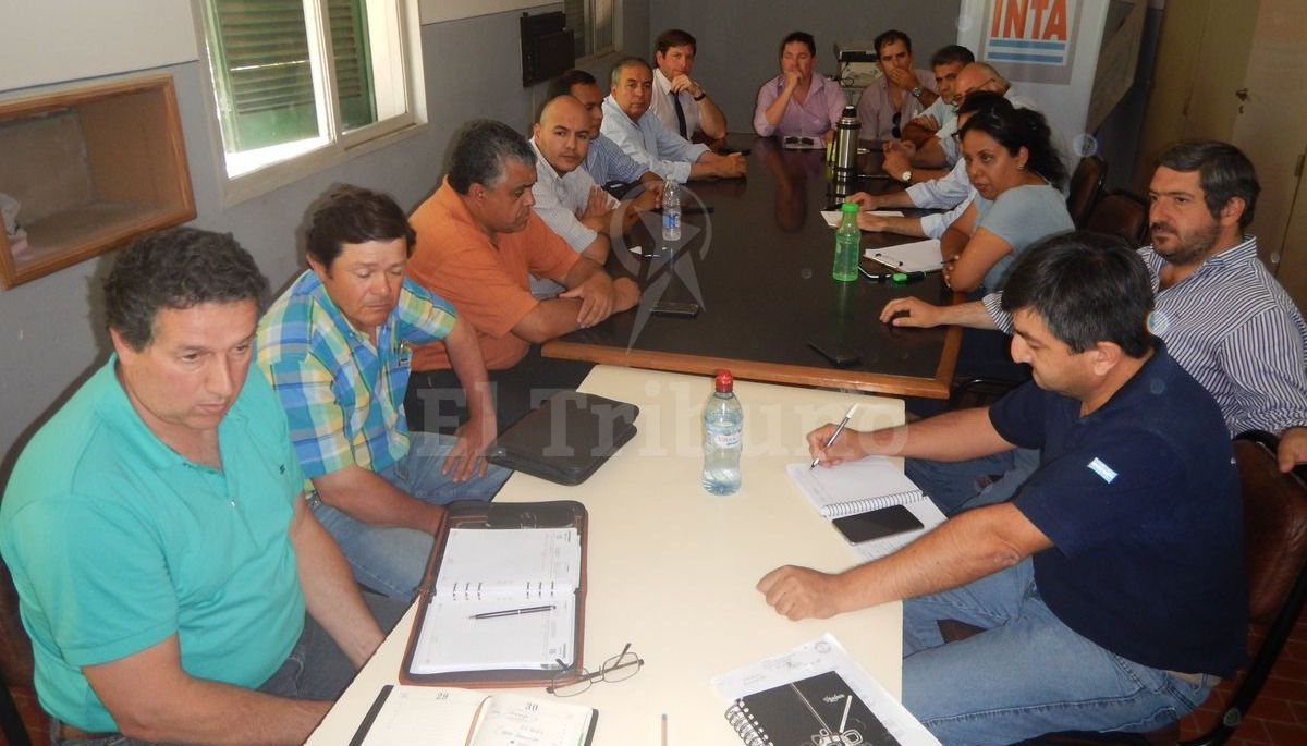 El sur de Salta, con protocolo contra las langostas