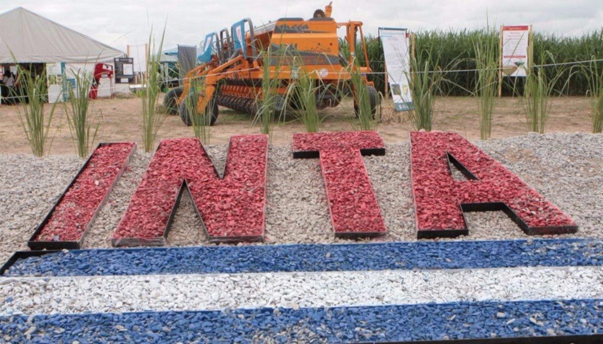 """El INTA cumplió 61 años y busca """"adelantarse a la innovación agroindustrial"""""""
